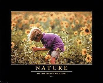 Motivational Nature