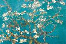 Vincent Van Gogh Almond Branches In Bloom, 1890