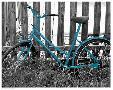 Anonymous Teal Bike I