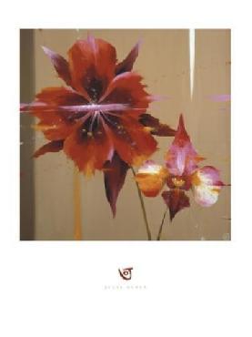 Julia Ogden Orchid & Corn Poppy
