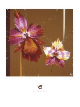 Julia Ogden Orchids & Seeds