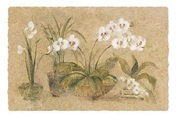 Cheri Blum Four Potted Orchids