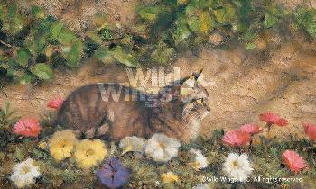 Robert Abbett In the Garden - Tabby Cat