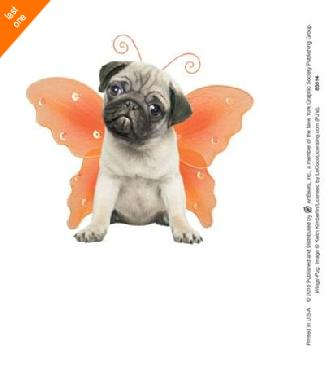 Anonymous Wings  -  Pug Canvas LAST ONES IN INVENTORY!!