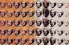 Andy Warhol Marilyn Monroe x 50