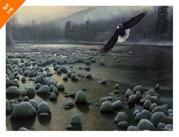 Kevin Daniel On Eagle Wings Canvas LAST ONES IN INVENTORY!!