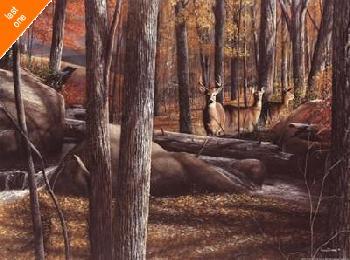 Kevin Daniel Autumn Alert Canvas LAST ONES IN INVENTORY!!