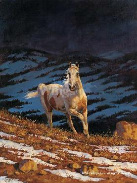Chris Cummings Approaching Storm - Stallion