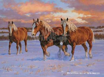 Chris Cummings Winter Gold - Belgians Remarque on Paper
