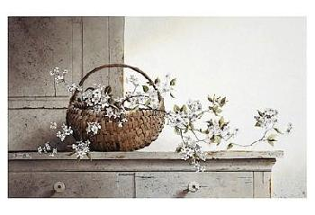 Ray Hendershot Spring Blossoms Canvas