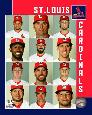 Anonymous St. Louis Cardinals 2017 Team Composite