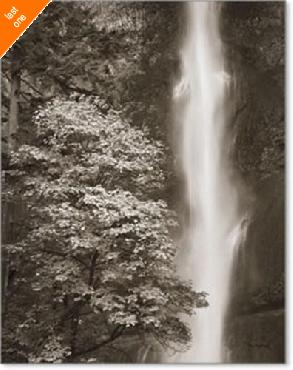 Alan Majchrowicz Multnomah Falls Canvas LAST ONES IN INVENTORY!!