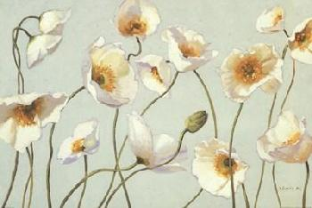 Shirley Novak White And Bright Poppies