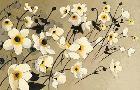 Shirley Novak Anemones Japonaises Blancs