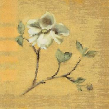 Cheri Blum Dogwood Blossom On Gold