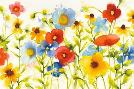 Shirley Novak Americana Meadow I Crop