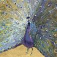 Nai Purple And Gold Peacock Canvas