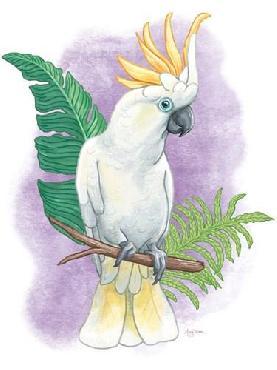 Mary Urban Tropical Flair III Canvas