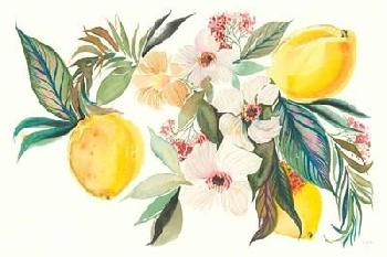 Kristy Rice Citrus Summer I Canvas
