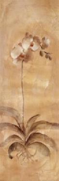 Cheri Blum White Orchid Panel Canvas