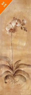 Cheri Blum White Orchid Panel Canvas LAST ONES IN INVENTORY!!