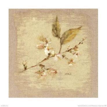 Cheri Blum Apple Blossom Square Canvas