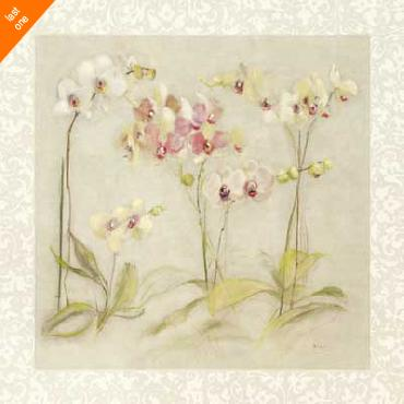 Cheri Blum The Dance of the Orchids NO LONGER IN PRINT - LAST ONE!!