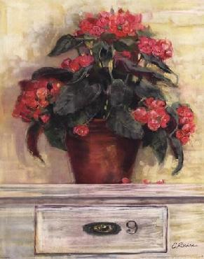 Carol Rowan Begonias Canvas