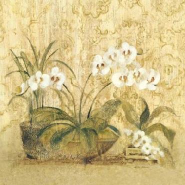 Cheri Blum Espirit Orchid Canvas