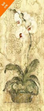 Cheri Blum Esprit Phalaenopsis Panel Canvas LAST ONES IN INVENTORY!!