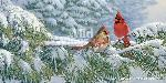 Marc Hanson Winter Light - Cardinals