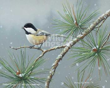 Jim Hautman Winter Snowfall - Chickadee Signed Open Edition on Paper