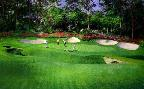 Peter Ellenshaw 13th Hole at Augusta