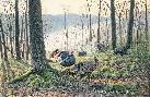 Jim Kasper Spring Fever - Eastern Wild Turkeys