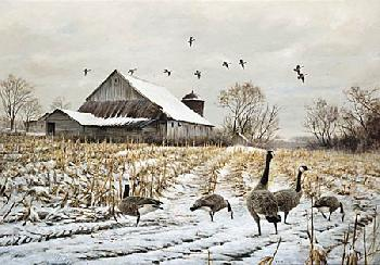 James Killen Country - Canada Geese