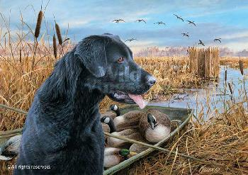 James Killen Empty Blind - Black Lab Remarque on Paper