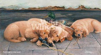 James Killen Golden Dreams - Golden Retriever Puppies Remarque on Paper