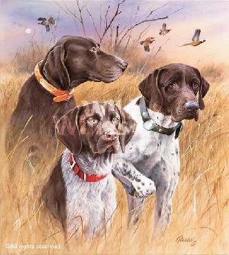 James Killen Great Hunting Dogs - German Shorthair Pointers