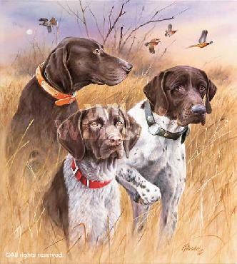 James Killen Great Hunting Dogs - German Shorthair Pointers Remarque on Paper