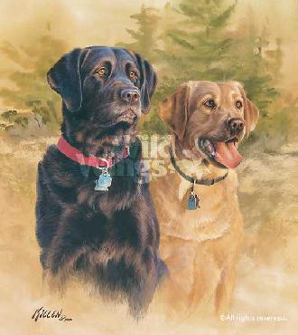 James Killen A Good Pair - Black and Yellow Labs