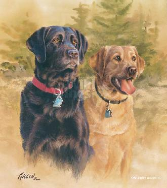 James Killen A Good Pair - Black and Yellow Labs Remarque on Paper