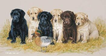 James Killen Greenhorns - Lab Puppies Artist