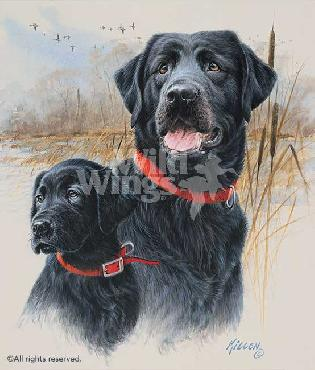 James Killen Legacy - Black Labs Remarque on Paper