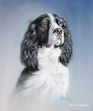 James Killen Portrait - Black and White Springer Signed Open Edition on Paper