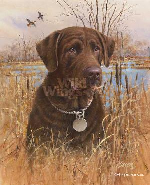 James Killen Top Dog - Chocolate Lab Signed Open Edition on Paper
