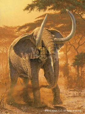 Lee Kromschroeder Golden Warrior Elephant Giclee on Canvas