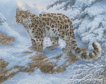 Lee Kromschroeder Snow Flurries - Snow Leopard Canvas