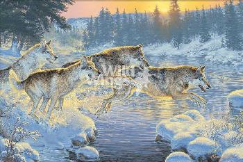 Lee Kromschroeder Through the Woods - Wolves Giclee on Canvas