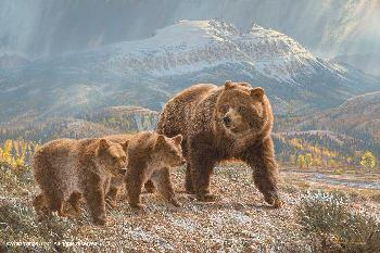 Lee Kromschroeder Under the Sleeping Giants - Grizzly Bears Canvas Canvas