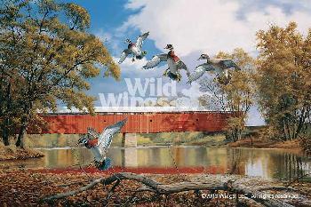 David Maass Eldean Bridge - Wood Ducks Artist